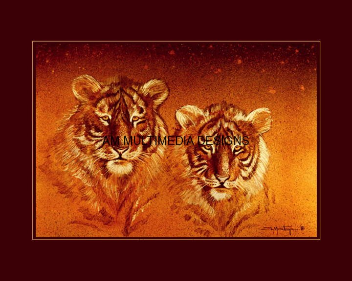 tigersweb