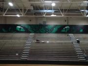 sw-mural-1